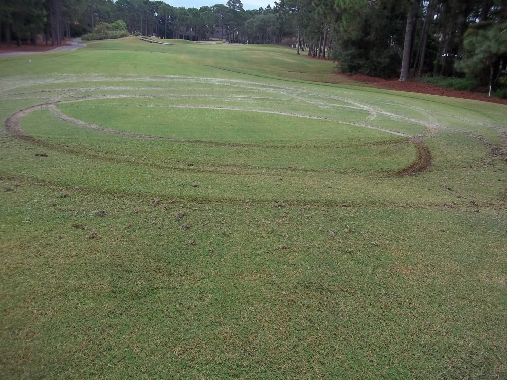 sandestin-gold-course-multiple-doughnuts